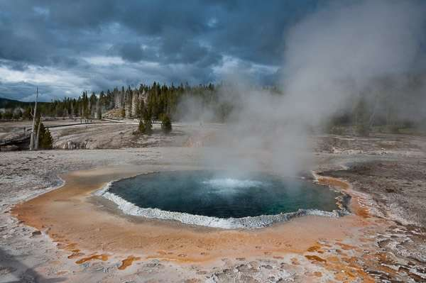 susan's yellowstone national park