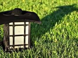 Lantern on Green Lawn