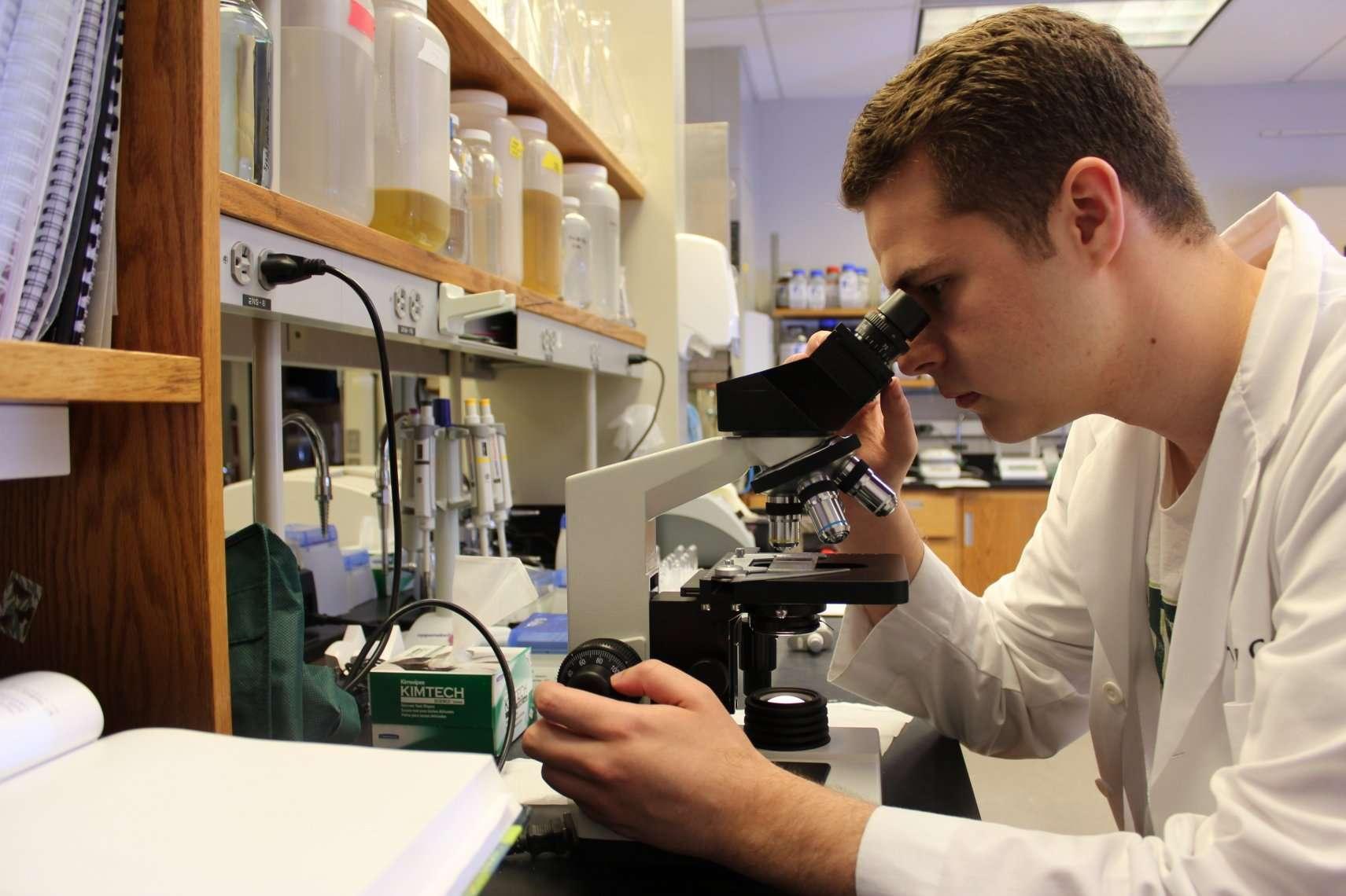 USF biofuels research