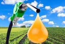 switching to biodiesel