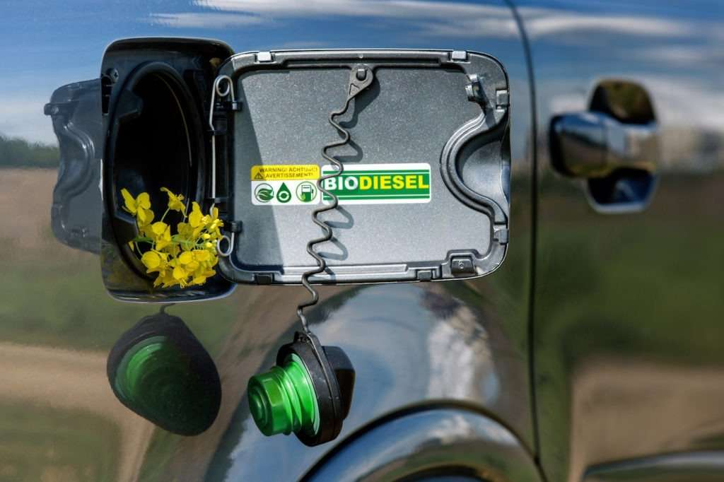 2020 is the year of biodiesel   Fuels Fix