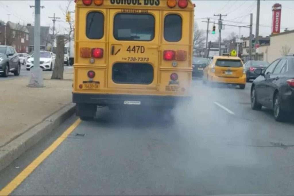 diesel buses