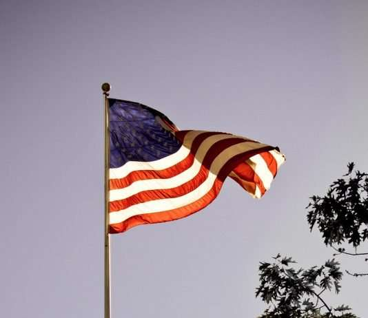American flag waving in the air with a evening sky blue background. Tree branches and leaves sit to the right side.